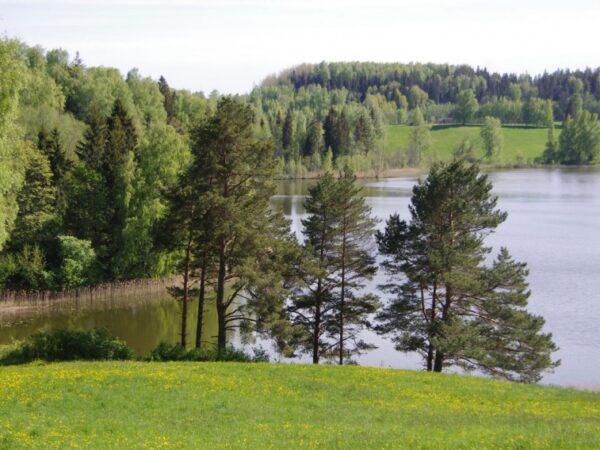 Elamumaa järve ääres